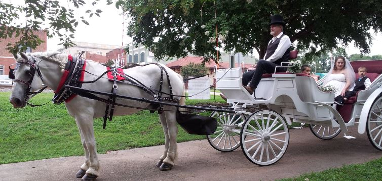 Belmont nc Wedding carriage