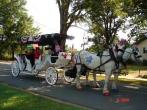 Horse and carriage for special events
